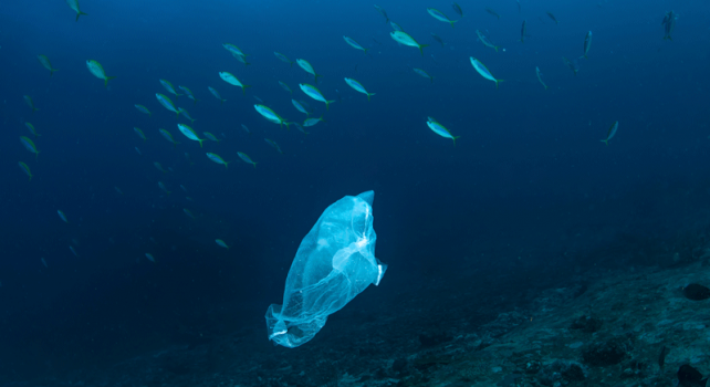 Plastic Packaging: The Need to change